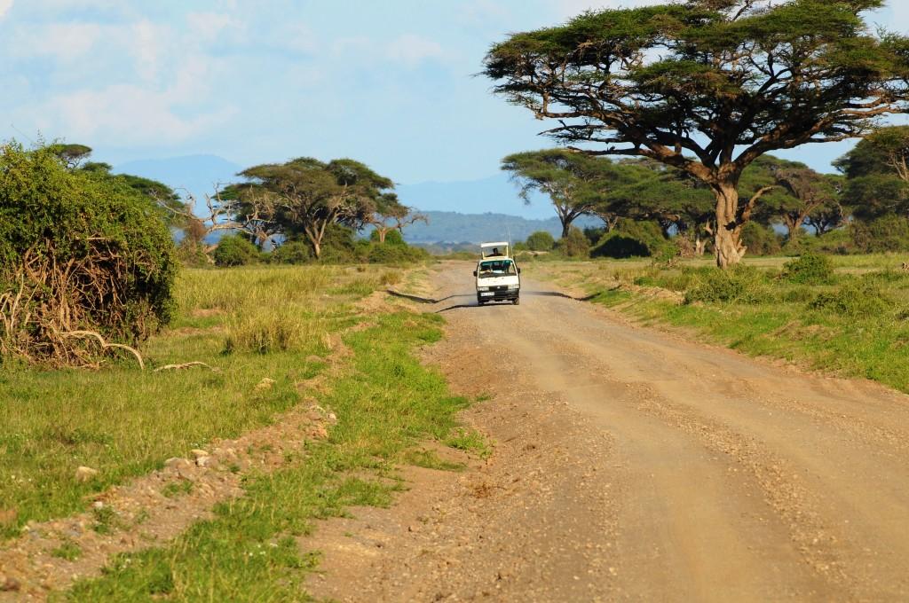 afrika-safari